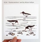 'Oystercatchers' greetings cards