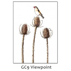'Viewpoint' Greetings Card