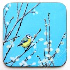 Coaster - Blue Tit (Spring Willow) *NEW*