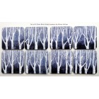 Special set of 8 Silver Birch Wood coasters