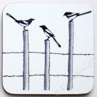 Coaster - Magpies (message to order as out of stock)