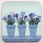 Coaster -  Spring Flower Pots - Crocus *SALE*