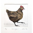 Drypoint Print - Ginger Chicken